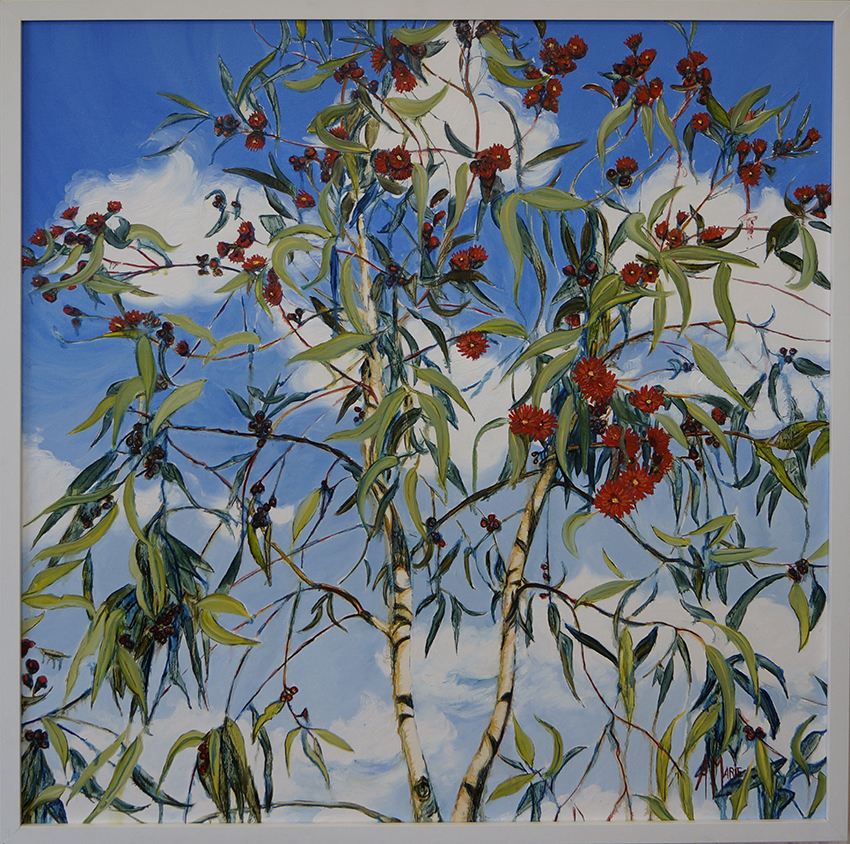 Annemarie Wiegerinck -Red flowering gum -