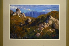 Jennifer Paull - High country sentinels -