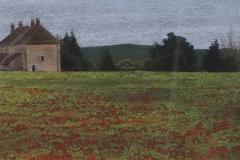 Poppyfield-