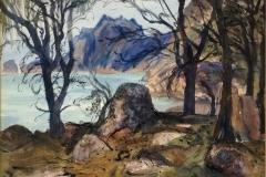 Lake-Pedder-Tasmania-
