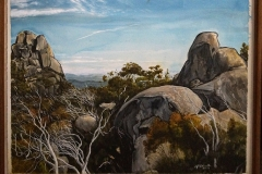Golden Renewal - Mt Buffalo -