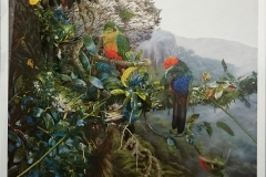 King Parrot's Fortress -