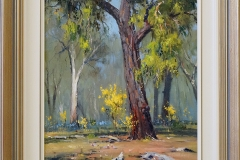 Ironbark and wattle -