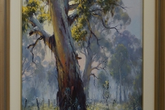 Gums through the mist -